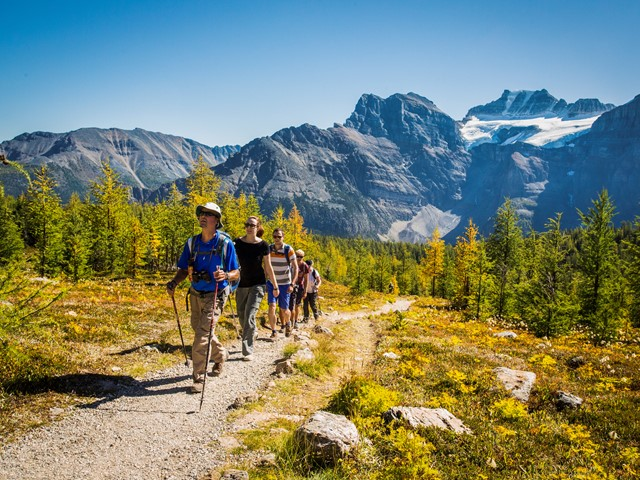 Discover Banff Tours 4