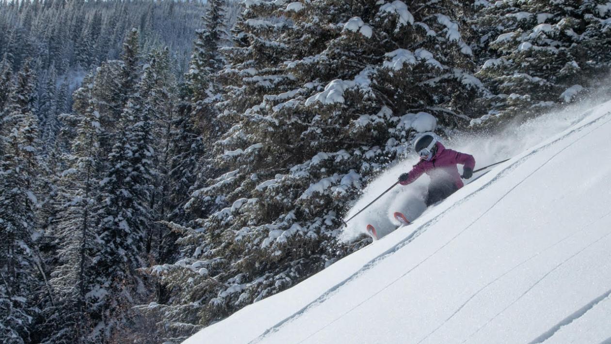 SnowFlow Yoga: The Key to Your Best Ski Season Yet Found on the Mat 3
