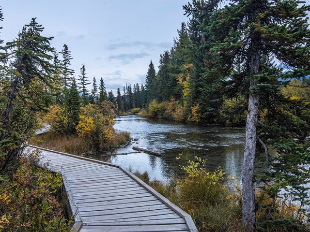 Downtown & Bow Valley Trail Audio Walking Tour | Canmore
