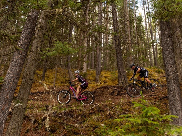 Free Group Ride