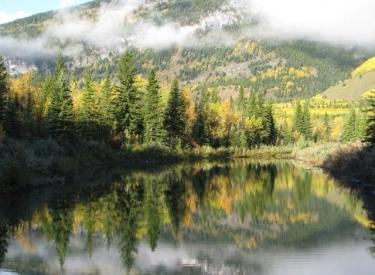 Lac Des Arcs Campground