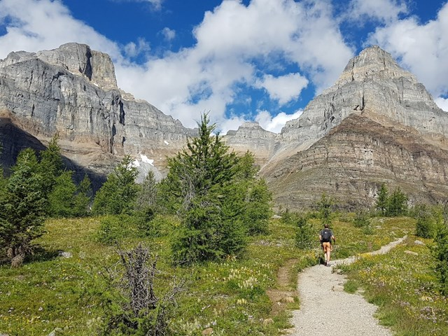 Canadian Rockies Experience 3