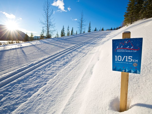 Masters World Cup of Cross-Country Skiing 2022